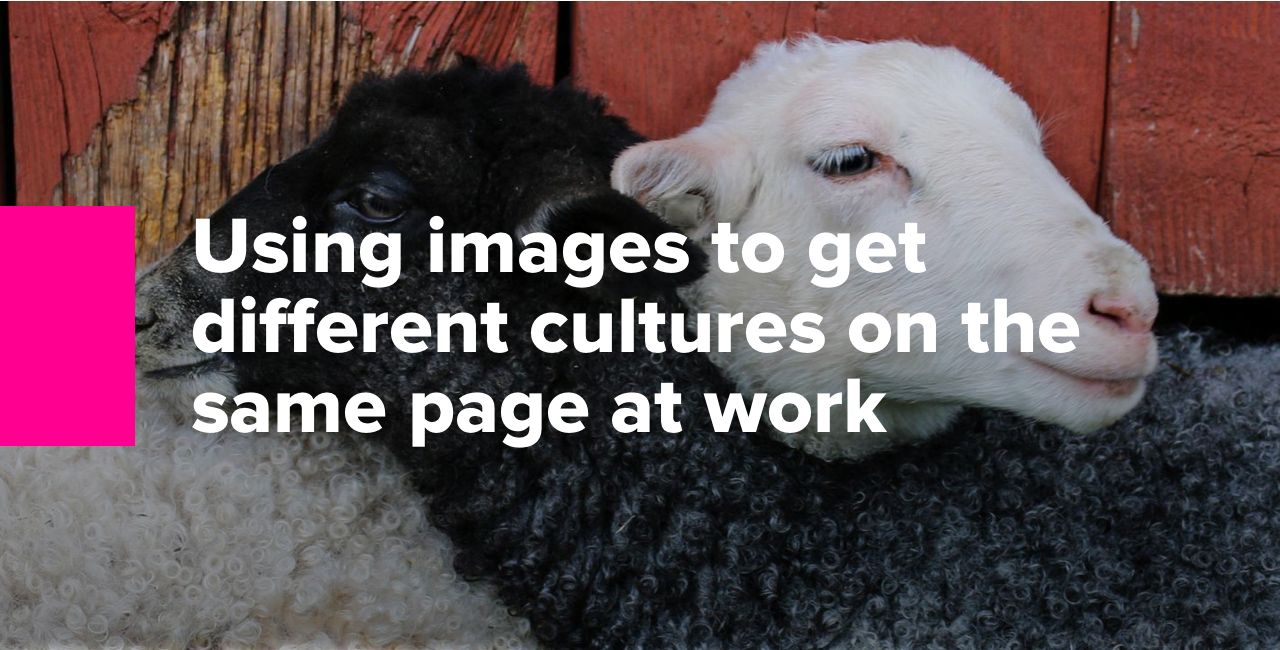Using images to get different cultures on the same page at work